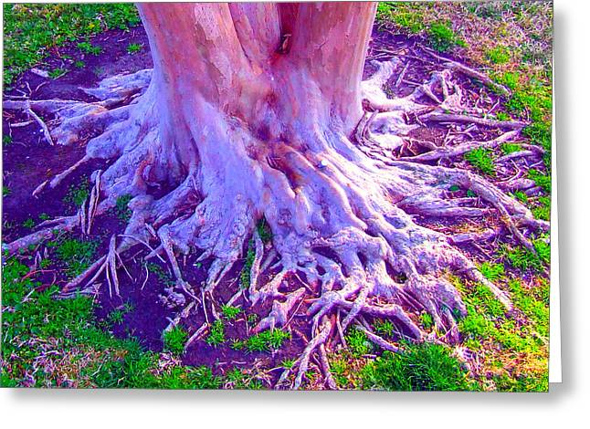 Greeting Card featuring the photograph Louisiana Plantation Roots by Angela Annas