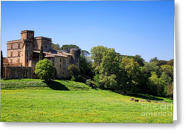 Lourmarin Castle Greeting Card by Olivier Le Queinec