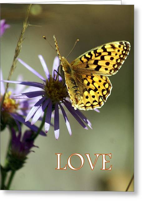 Love 1 Greeting Card by Marty Koch