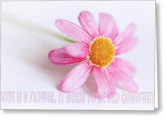Love Is A Flower Greeting Card