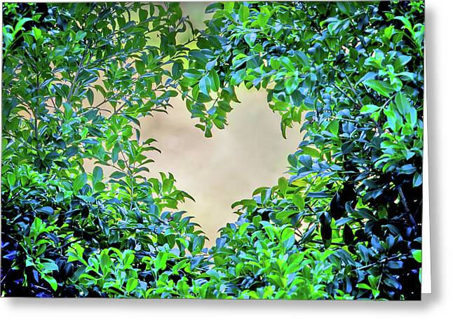 Love Leaves Greeting Card by Az Jackson