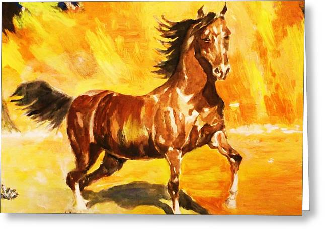 Lone Mustang Greeting Card by Al Brown