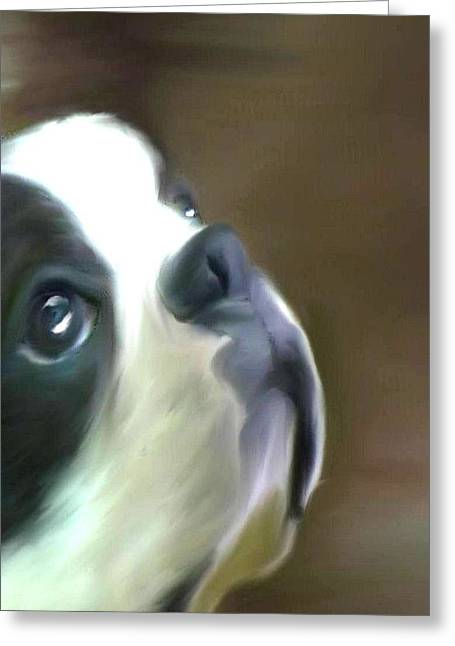 Greeting Card featuring the painting Love Of A Boston by Maria Urso