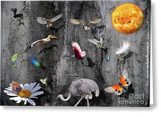 Love Of Animals Greeting Card