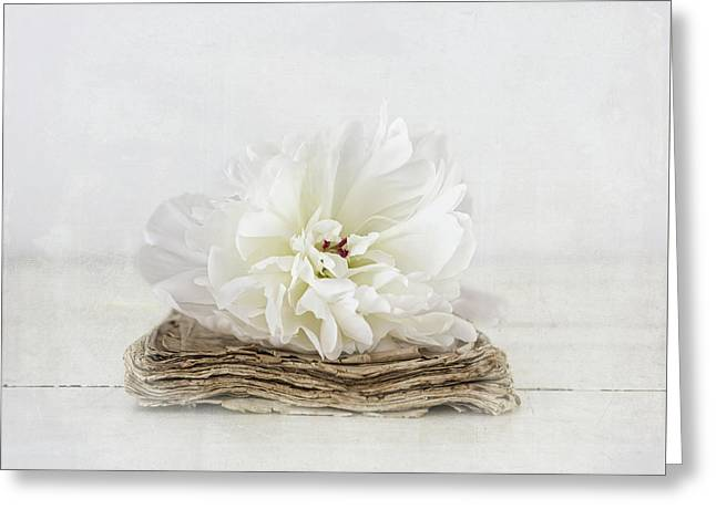 Greeting Card featuring the photograph Love Story by Kim Hojnacki