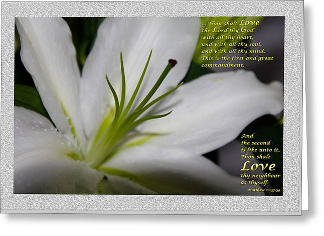 Love Greeting Card by Terry Wallace