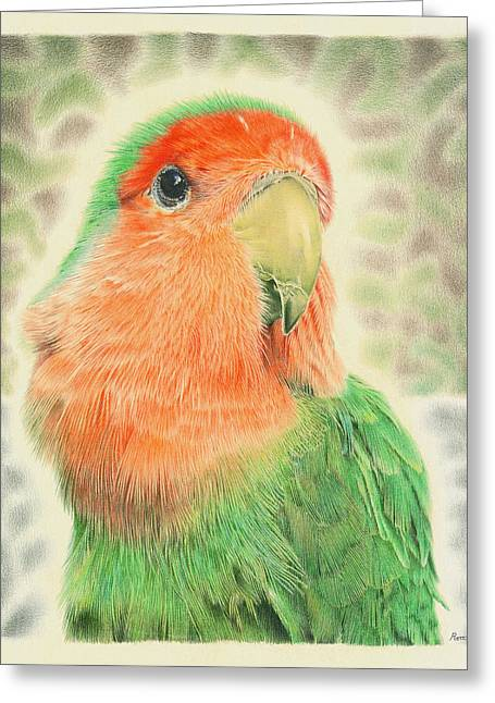 Lovebird Pilaf Greeting Card