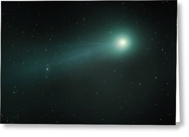 Greeting Card featuring the photograph Lovejoy by James Billings