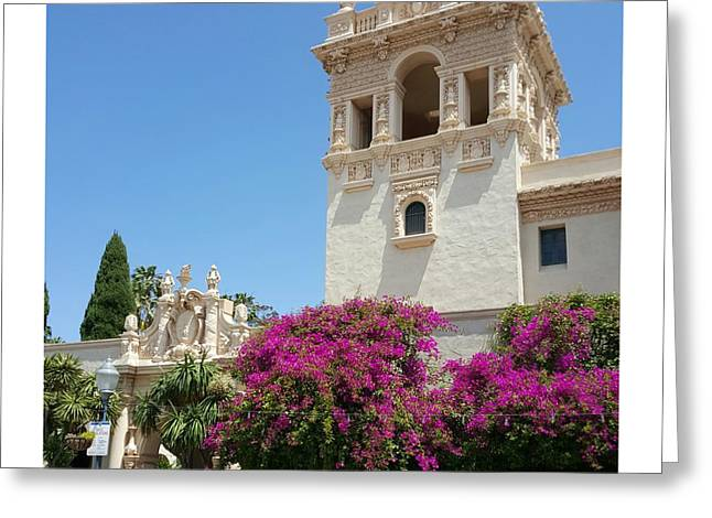 Lovely Blooming Day In Balboa Park San Diego Greeting Card