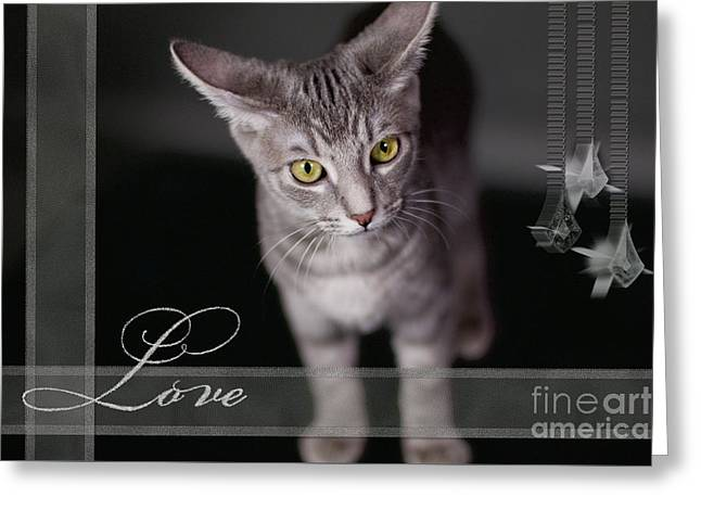 Lovely Face Card Greeting Card