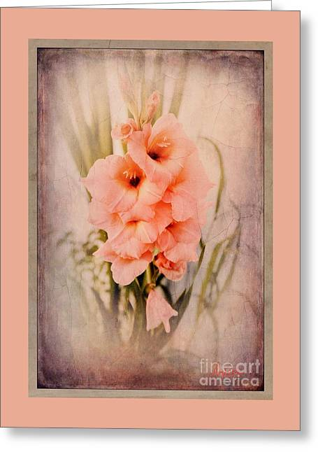 Lovely Gladiolus Greeting Card