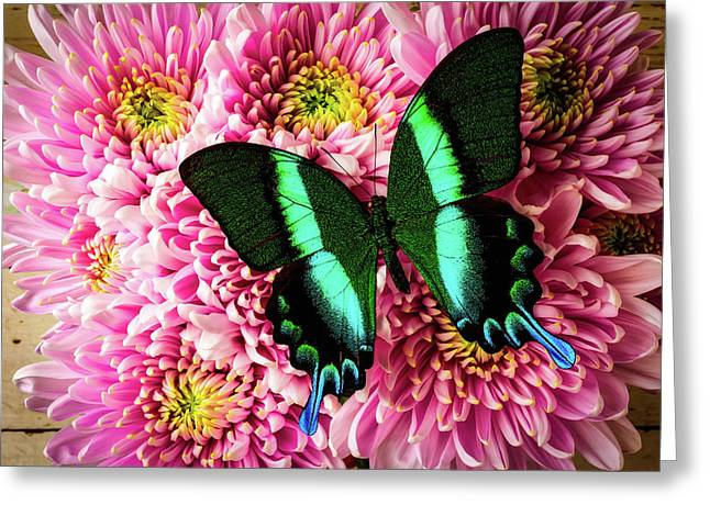 Lovely Green Blue Butterfly Greeting Card