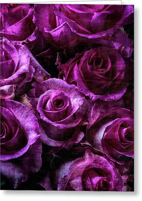 Lovely Moody Roses Greeting Card