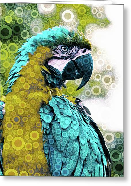 Lovely Plumage Greeting Card