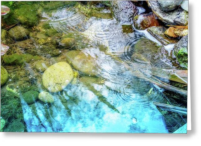 Lovely Ripples Greeting Card by Terry Davis