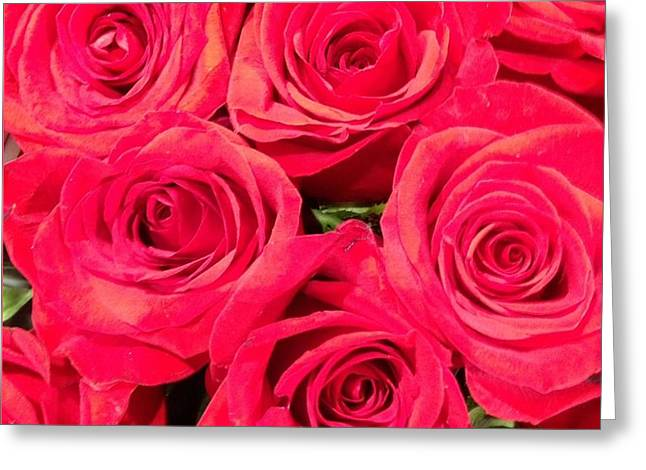 Lovely Roses Greeting Card by Alohi Fujimoto