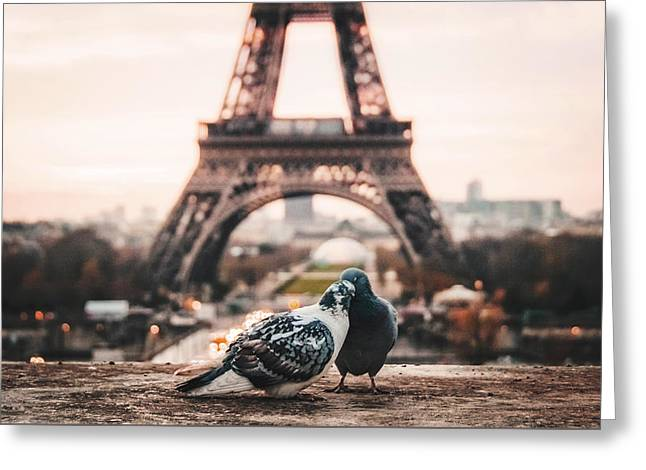 Lover Doves In Paris Greeting Card