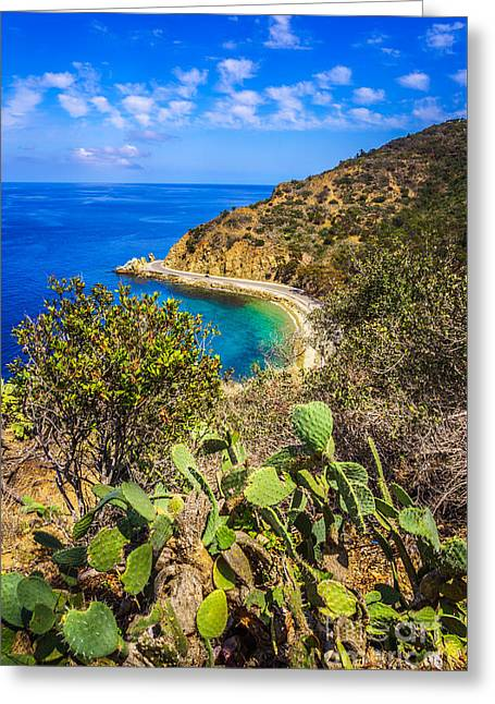 Lover's Cove Catalina Island Aerial Photo Greeting Card by Paul Velgos