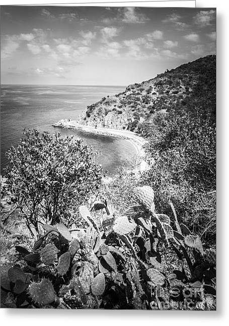 Lover's Cove Catalina Island Black And White Photo Greeting Card by Paul Velgos