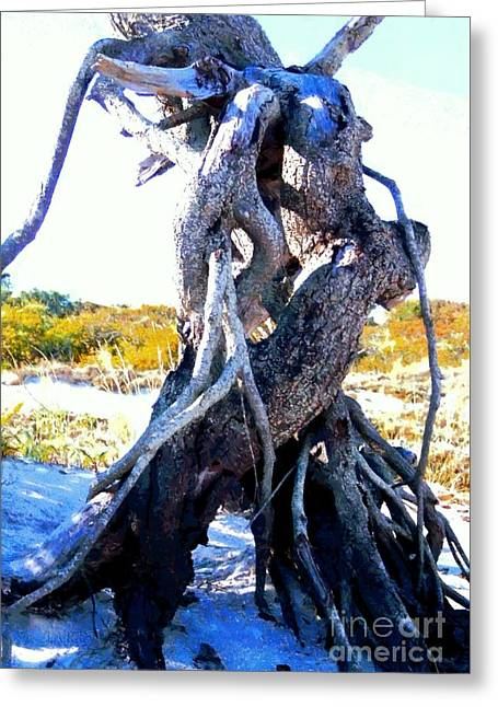 Lovers Entwined Beach Driftwood Greeting Card