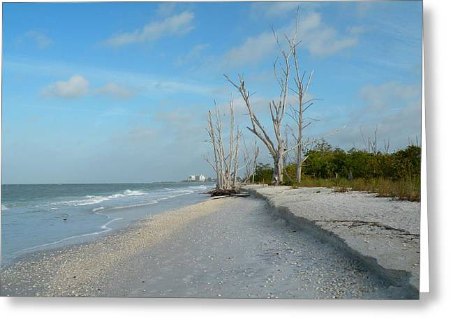 Lovers Key Beach Greeting Card by Rosalie Scanlon