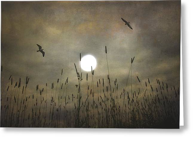 Lovers Moon Greeting Card by Tom York Images