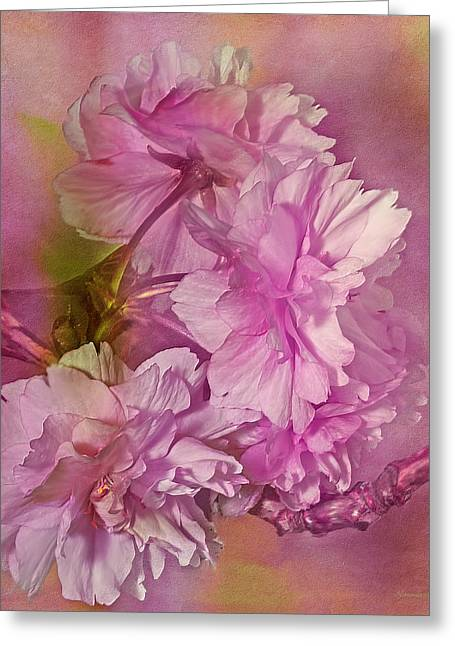 Pink Blossoms Greeting Cards - Loving Promises Greeting Card by Georgiana Romanovna