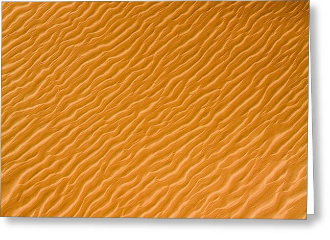 Low Rippling Dunes In The Northern Greeting Card by Michael Fay