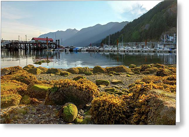 Low Tide At Horseshoe Bay Canada Greeting Card by David Gn