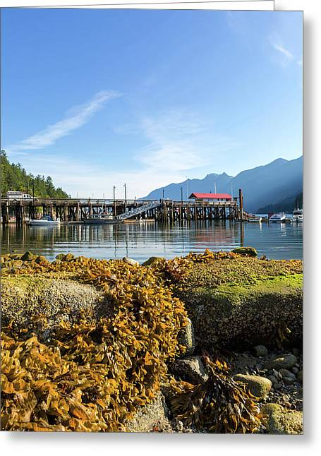 Low Tide At Horseshoe Bay Canada On A Sunny Day Greeting Card by David Gn