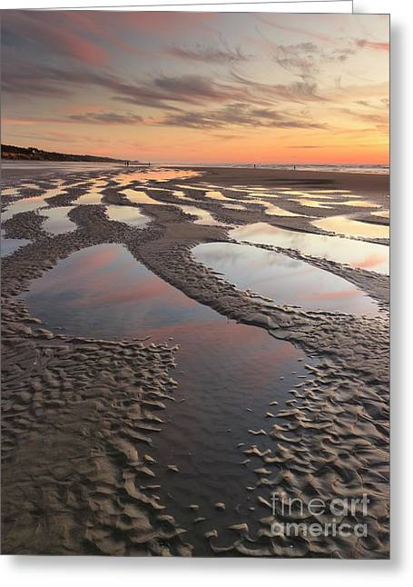 Low Tide At Sunset --vertical Greeting Card