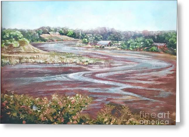 Low Tide In The Cove Greeting Card