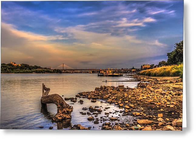 Low Water Vistula Riverscape In Warsaw Greeting Card