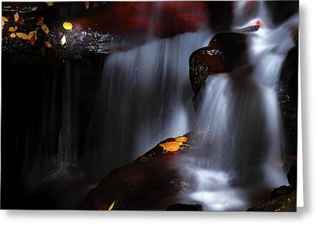 Lower Amicalola Falls Greeting Card