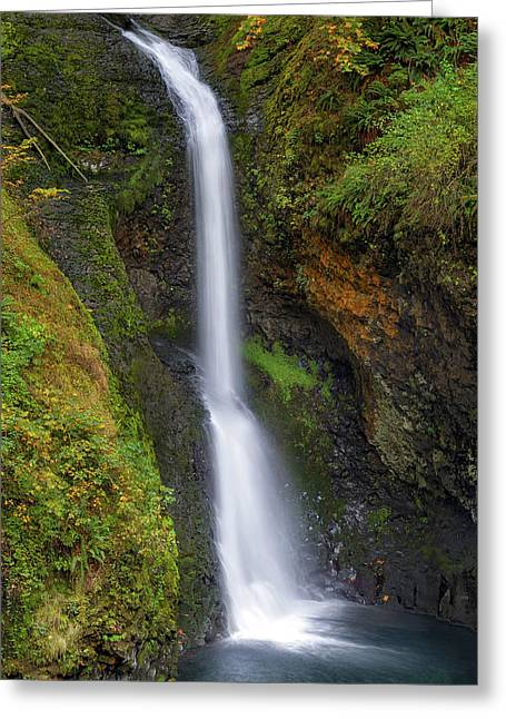 Lower Butte Creek Falls In Fall Season Greeting Card by David Gn