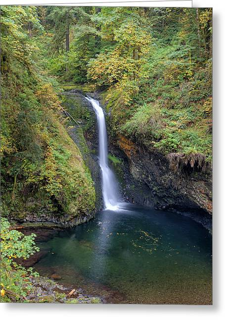 Lower Butte Creek Falls Plunging Into A Pool Greeting Card by David Gn