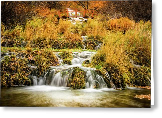 Lower Cascades At Cascade Springs Greeting Card by TL Mair