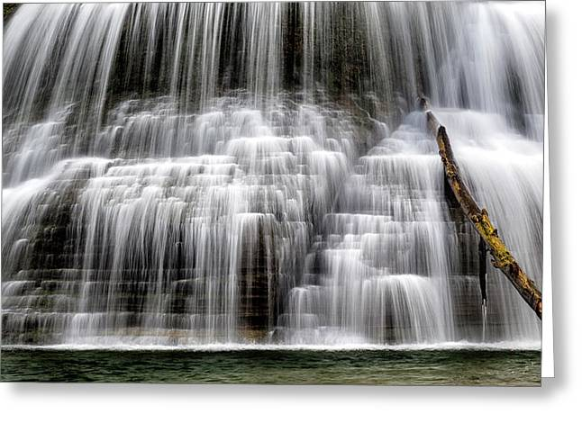 Lower Falls And Log Greeting Card