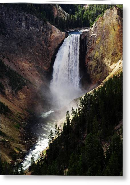 Lower Falls At Yellowstone Greeting Card