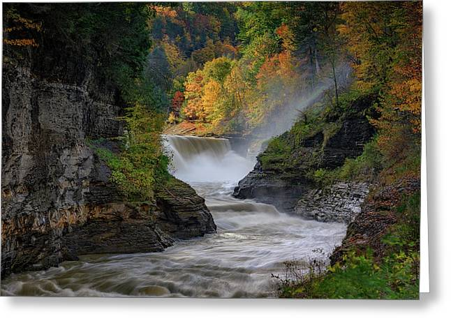 Lower Falls Of The Genesee River Greeting Card by Rick Berk