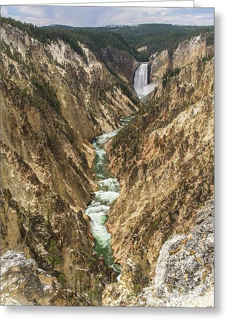 Lower Falls Of The Yellowstone - Portrait Greeting Card