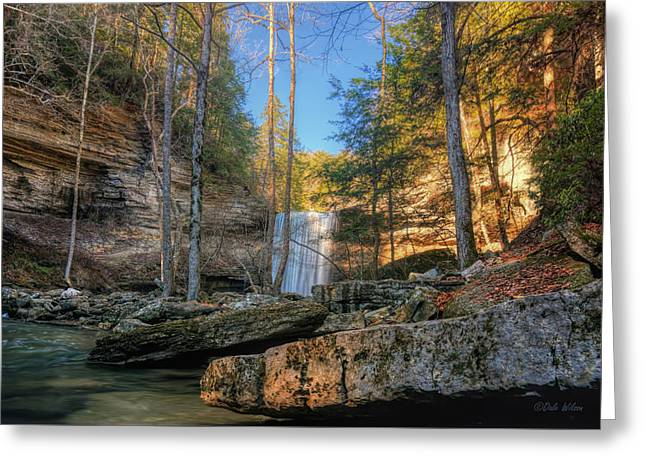 Lower Greeter Falls 2 Greeting Card by Dale Wilson