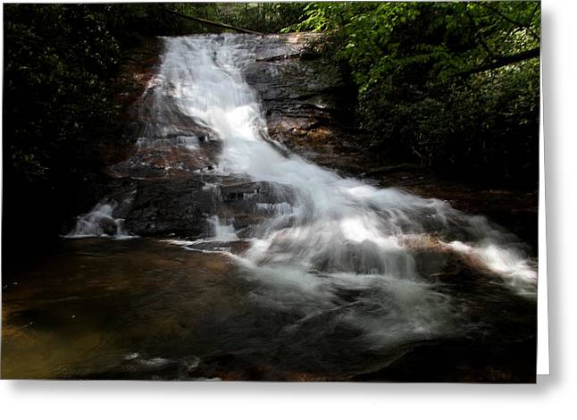 Lower Helton Creek Falls Greeting Card by Dave Clark