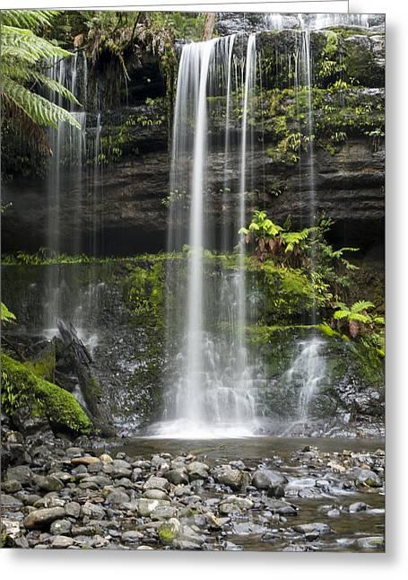 Lower Russell Falls Tasmania  Greeting Card by Odille Esmonde-Morgan