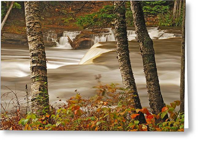 Newberry Greeting Cards - Lower Tahquamenon Falls 5 Greeting Card by Michael Peychich