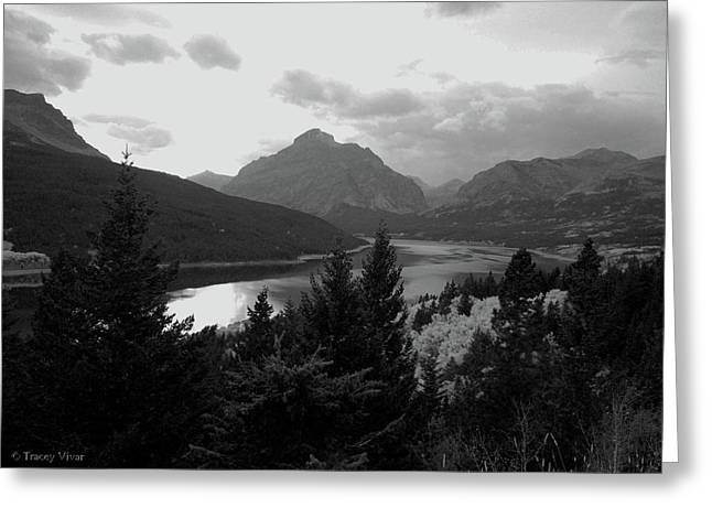 Lower Two Medicine Lake In Black And White Greeting Card