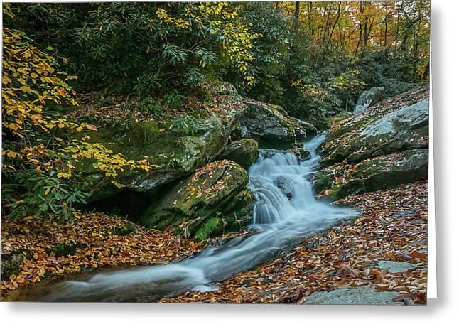 Lower Upper Creek Falls Greeting Card