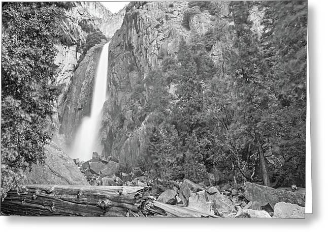 Lower Yosemite Falls In Black And White By Michael Tidwell Greeting Card