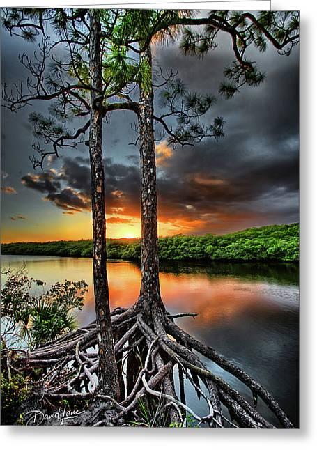 Loxachatchee Sunset Greeting Card