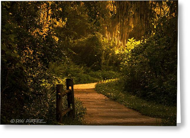 Greeting Card featuring the photograph Loxahatchee Boardwalk by Don Durfee